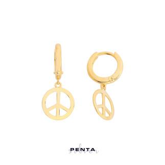Barış Gümüş Küpe - Thumbnail